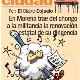 LAS-COCHAS-DE-LA-CIUDAD-P-WEB