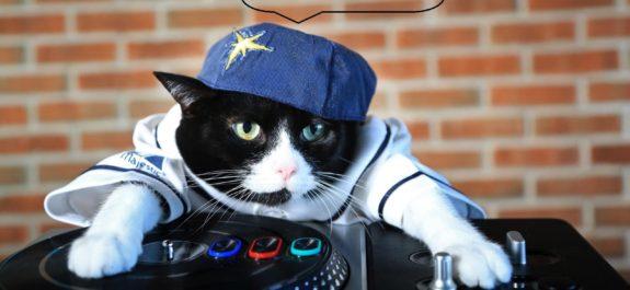 DJ-Gato