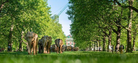 coexistence-lantana-elephant-sculpture-herd-migration-12