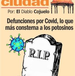 LAS COCHAS DE LA CIUDAD P WEB