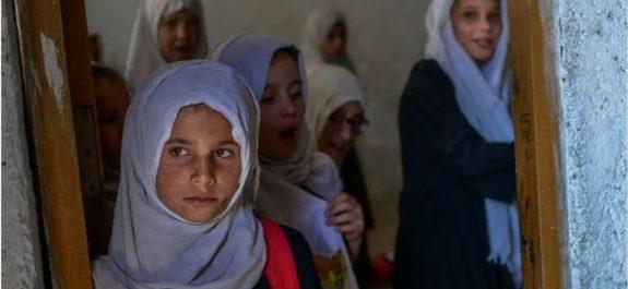 Talibanes excluyen