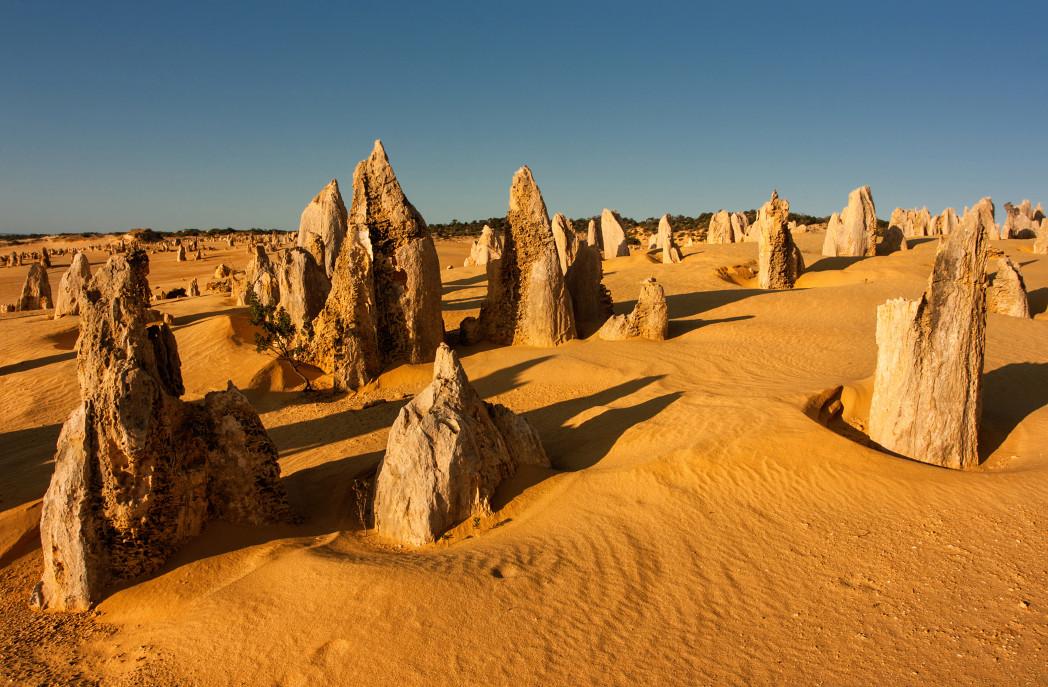 El desierto de los pináculos, en Australia – El Heraldo de San Luis Potosi
